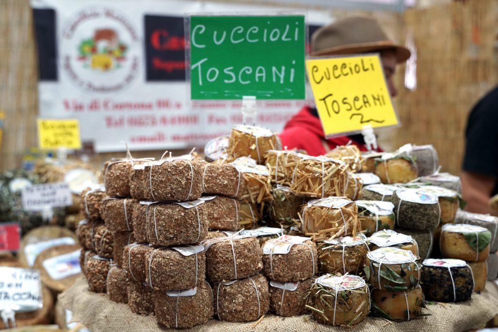Cuccioli Toscani